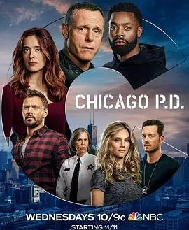 芝加哥警署第八季海報