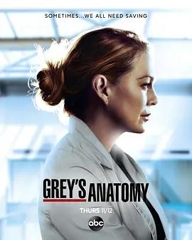 實習醫生格蕾第十七季海報