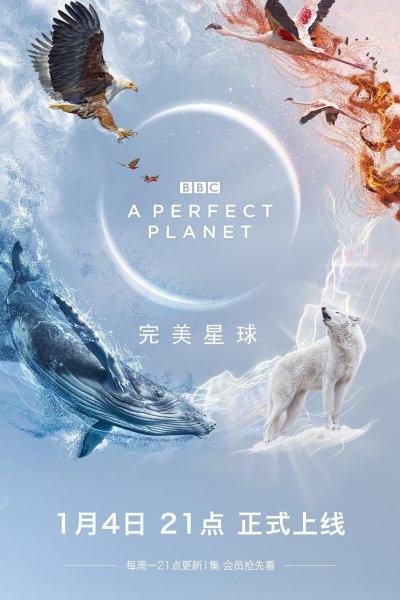 完美星球海報
